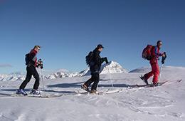 Activité sport : ski de randonnée